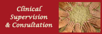 Clinical Supervision & Consultation